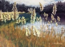 Painting the Light - Jody Shyllberg